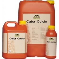 CATOR CALCIO