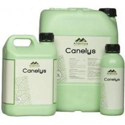 CANELYS 1 L
