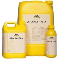 Atlante Plus