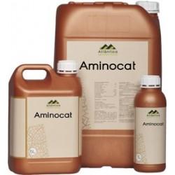Aminocat